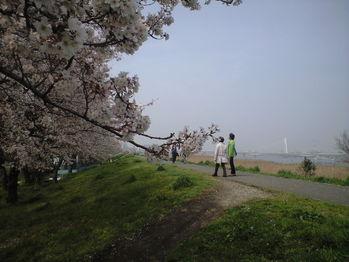 2010年4月6日大師橋右岸堤防
