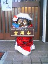 2006Dec9花むらのサンタヌキ