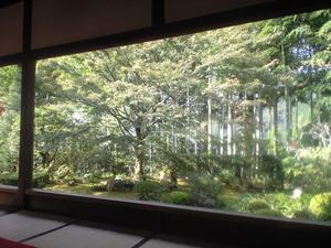 宝泉院 竹
