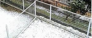 お彼岸の雪2018-3-21