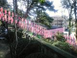 2008Jan3神社0