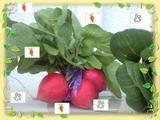 2009年6月15日 自作スタンプ野菜にお絵かき