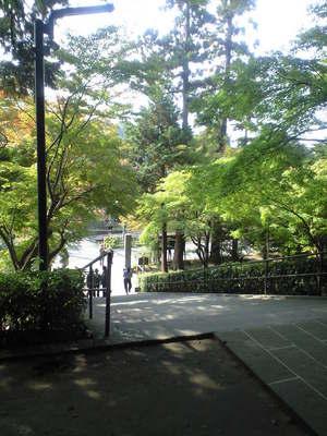 2009年11月9日円覚寺参道