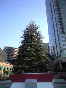 2010年12月22日ガーデンプレイス大きなツリー