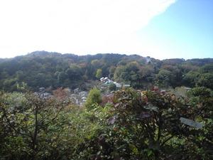 2010年11月19日円覚寺から東慶寺方面