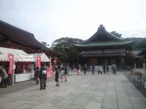 11月3日八坂神社七五三風景