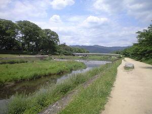 2010年5月18日上賀茂神社付近の鴨川