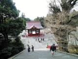 2008Jan30鶴岡八幡宮