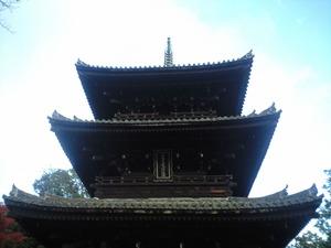 2010年11月15日金戒光明寺三重塔