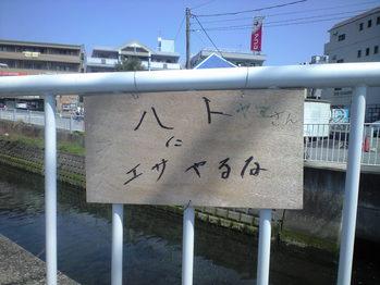 2010年4月8日ハト山さんにえさやるな