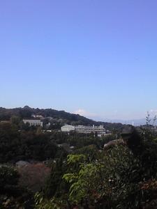 2010年11月19日円覚寺から見る富士山