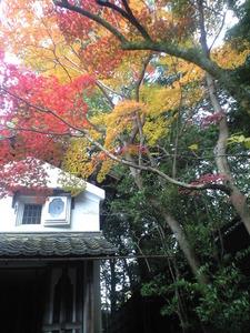 2010年11月16日詩仙堂お蔵