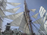 2009年7月20日海王丸 総展帆4