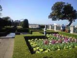 2008年11月13日イタリア山庭園