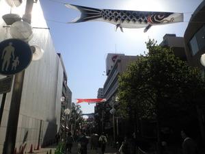 2011年4月13日伊勢佐木町鯉のぼり