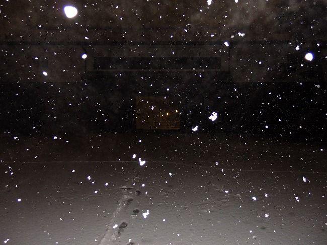 雪の桜田門(フラッシュ)