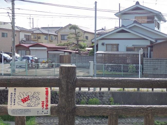 【現地】6-12:濯紫公園