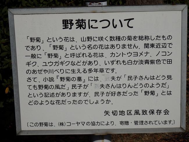 野菊の墓文学碑3
