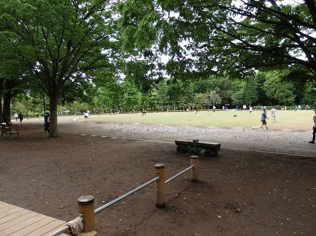 【現地】1-51:井の頭公園西園競技場