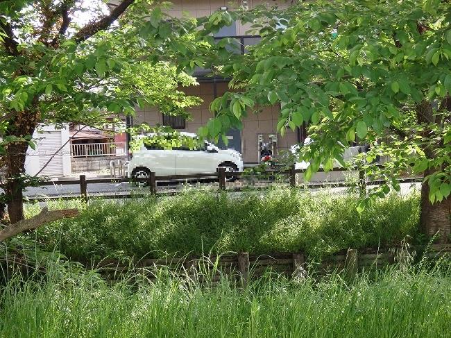 【現地】6-8:白石ハイツ付近