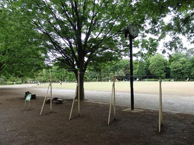 【現地】5-53:井の頭公園西園競技場