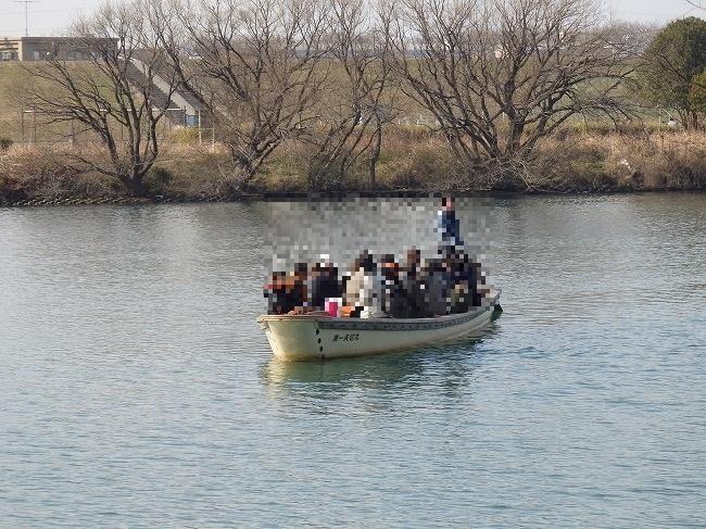 矢切りの渡し舟