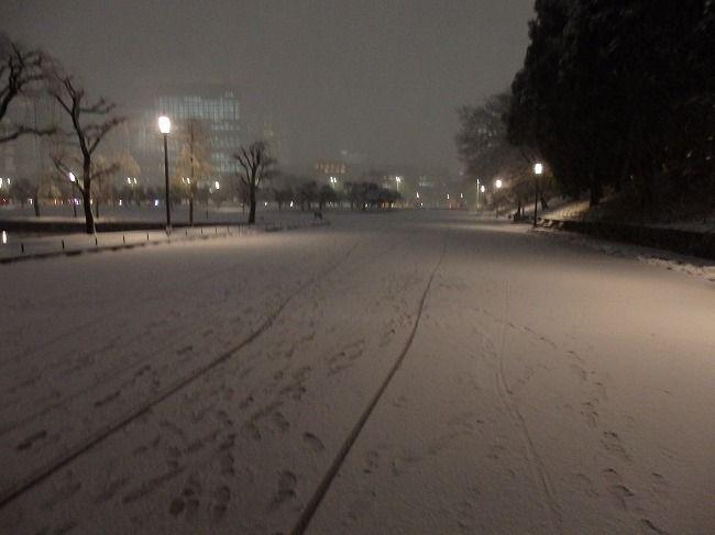 雪の皇居外苑