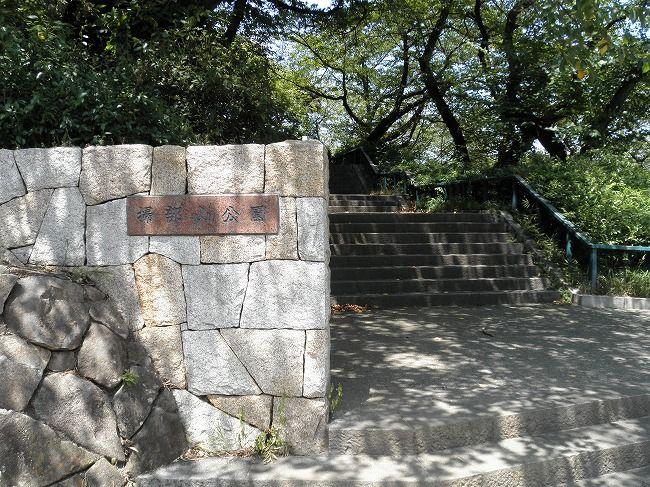 掃部山公園1