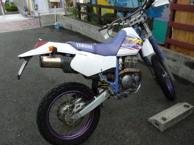 P1010953