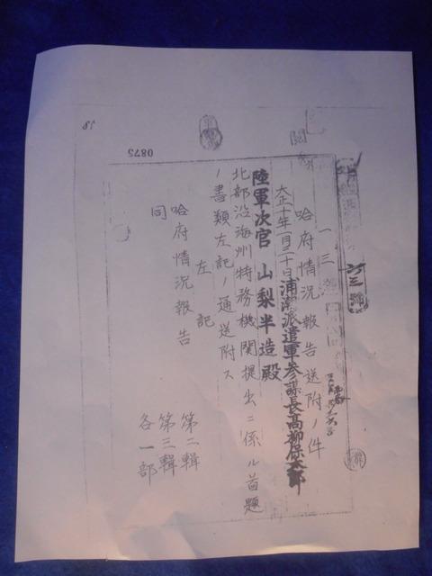 DSCN7545