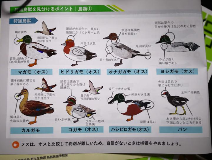 0706狩猟読本別冊