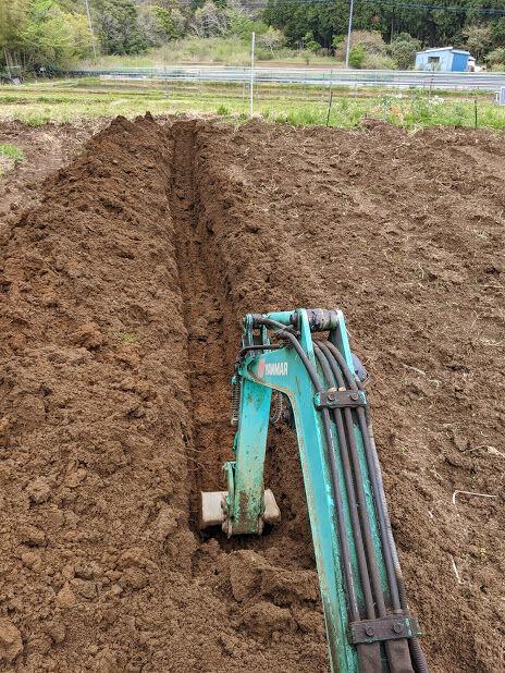 0421自然薯畑