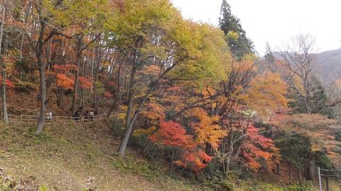 1106大内宿裏山.JPG