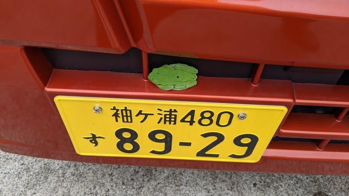 0627葉っぱのような1