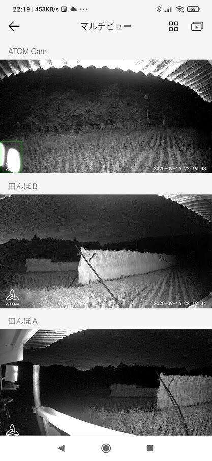 0916夜間監視画像