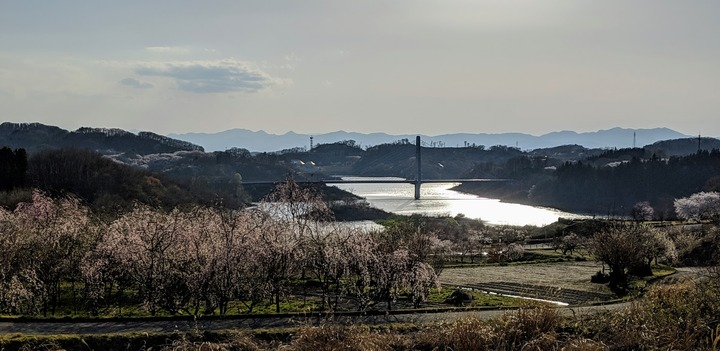0418滝桜周辺5