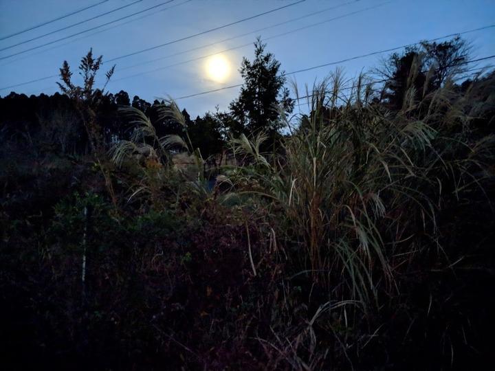 1121夜景モード