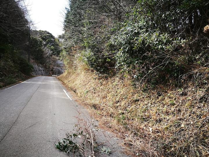 0224崖の整理3