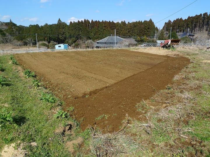 0221ジャガイモ畑耕耘