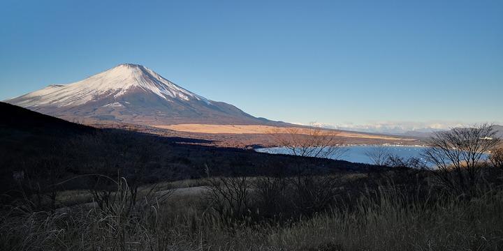 1231富士