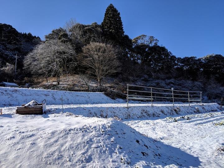 0201雪景色2