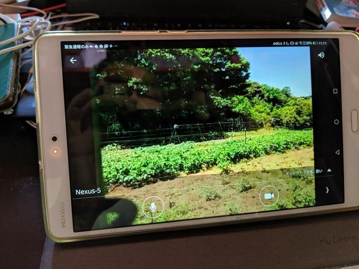 0523監視カメラ画像