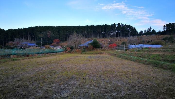 0104庭の景観1