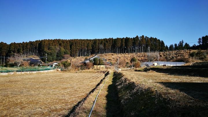 0104庭の景観2