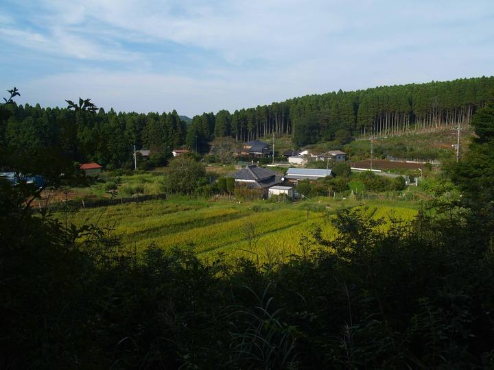 山からの農場黄金版