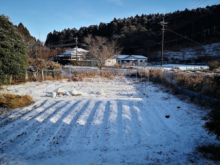 0106雪の農場2