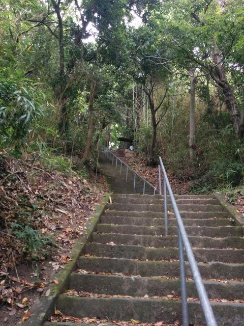 0813神社階段2.jpg