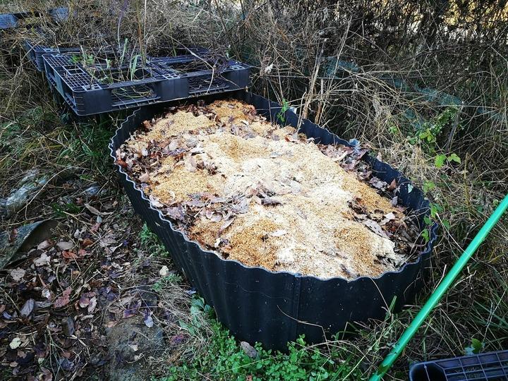 1224堆肥用落ち葉