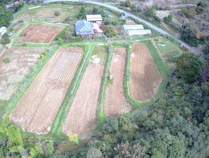 1022西から見た農場