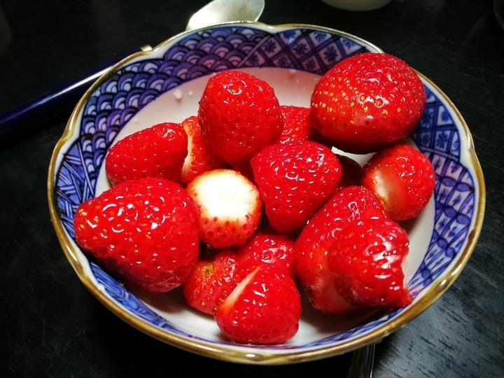 0524イチゴ収穫2